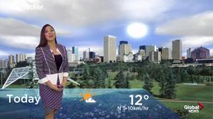 Edmonton early morning weather forecast: Wednesday, September 19, 2018
